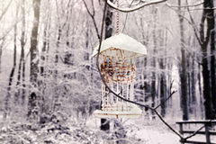 Winter bird house Stock Images