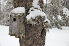 Winter Birdhouse Stock Photos