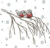 Winter birds on branch and snowflakes Stock Images