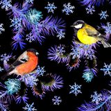 Winter birds, pine tree branches, snowflakes. Seamless pattern in neon light. Night watercolor royalty free illustration