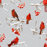Winter Birds with Rowan Berries Retro Background - Seamless Pattern Stock Image