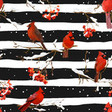 Winter Birds with Rowan Berries Retro Background - Seamless Pattern Royalty Free Stock Image