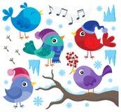 Winter birds theme set 1 Stock Photo