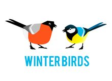 Winter birds are tit and bullfinch. Characters in a flat style Stock Illustration