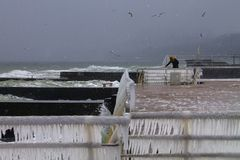 Winter on Black Sea: ice and gulls Royalty Free Stock Photos
