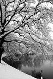 Winter in black and white Stock Photo