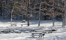 Winter Blanket. A heavy blanket of snow covers the picnic area of John Boyd Thacher Park in Voorheesville, New York Royalty Free Stock Photography