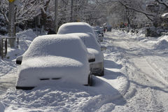 Winter Blast Royalty Free Stock Image