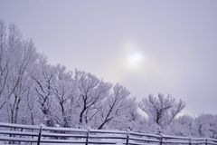 Winter Bliss Royalty Free Stock Images