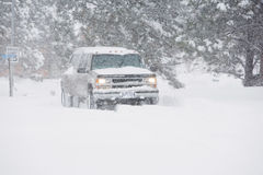 Winter Blizzard Stock Images