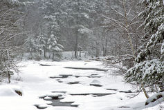 Winter blizzard. Winter storm in the White Mountains of New Hampshire along the swift river Stock Photos