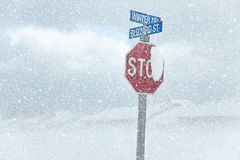 Winter Blizzard Stop Sign Stock Photos