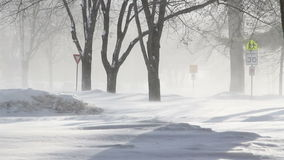 Winter blizzard in town Stock Images