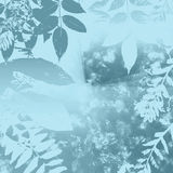 Winter Blue Leaves stock illustration