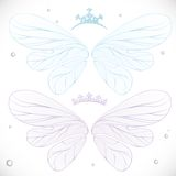 Winter blue and violet fairy wings with tiara bundled Stock Photos