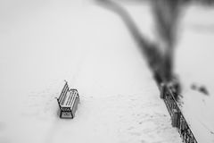 Winter blured black and wight background. Bench in the park. Sel Royalty Free Stock Images