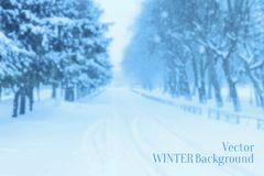 Winter Blurred Background Royalty Free Stock Image
