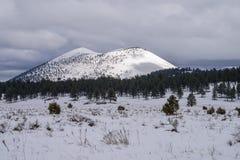 Winter in Bonito Park Stock Photography
