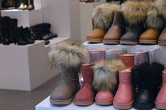 Winter boots displayed Royalty Free Stock Photo