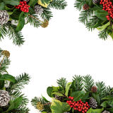 Winter Border with Holly. Winter background border with holly and red berries, ivy, snow covered pine cones and fir over white Stock Photography
