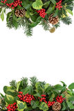 Winter Border with Holly and Flora Royalty Free Stock Photos