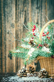 Winter bouquet for Christmas Stock Photography