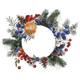 Winter bouquet. Tree, wild berries and orange Royalty Free Stock Photography