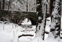 Winter-Brücke Stockfotografie