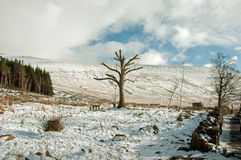 Winter in the Brecon beacons. Royalty Free Stock Photos