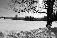 Winter in Breitnau in the Black Forest, Germany Royalty Free Stock Photography