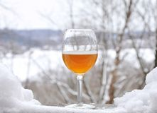 Winter brew Royalty Free Stock Image