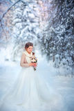 Winter bride Royalty Free Stock Images