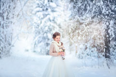 Winter bride Stock Images