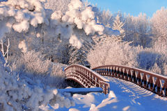 Winter bridge. A snowy, frosty winter walking bridge Royalty Free Stock Photos