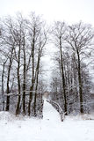 Winter bridge Stock Photos