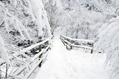 Winter bridge Royalty Free Stock Photography