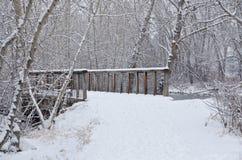 Winter Bridge after a Fresh Snowfall Royalty Free Stock Photo