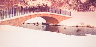 Winter Bridge over Pond. Beautiful snowy winter pond with footbridge with vintage tone filter Royalty Free Stock Photography