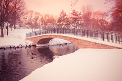 Winter Bridge over Pond. Beautiful snowy winter pond with footbridge with vintage tone filter Stock Photos