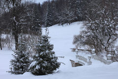 Winter bridge in Pavlovsk Park Saint-Petersburg, Russia. Winter snowy bridge in Pavlovsk Park Saint-Petersburg, Russia Stock Photos