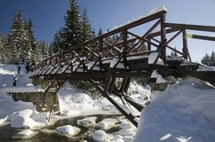 Winter bridge Royalty Free Stock Photo