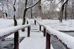 Winter bridge. In snow-covered park Stock Images