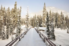 Winter bridge in snow field Stock Images