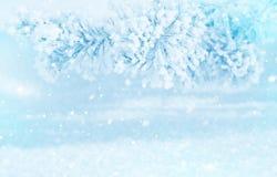 Winter bright background. Stock Photos
