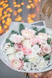 Winter Bright Bouquet Of Mixed Flowers With Cotton, Pine Branches Nobilis And Ranunculus. Floral Bunch With Persian Stock Photos