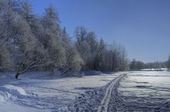 Winter bright landscape Royalty Free Stock Photos