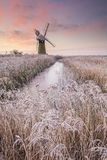 Winter Broads. Frost on the reeds in front of St Bennets mill at sunrise on the Norfolk Broads royalty free stock photos