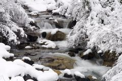 Winter brook Royalty Free Stock Image
