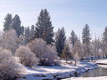 A Winter Brook. This image of the brook surrounded by trees and bushes covered with snow and hoarfrost with the small bridge in the background was taken in NW Stock Photo