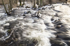 Winter brook Royalty Free Stock Photo